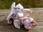 Cuddling Winged Mice