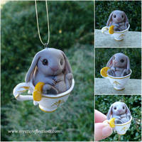 Teacup Rabbit