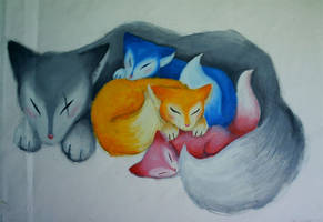 Foxes by HanHan