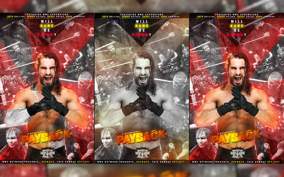 Wwe Payback Posters Display