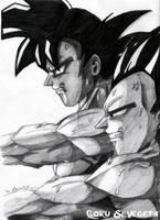 Goku and Vegeta Training by The-Ebony-Phoenix