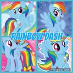 CAT: Rainbow Dash