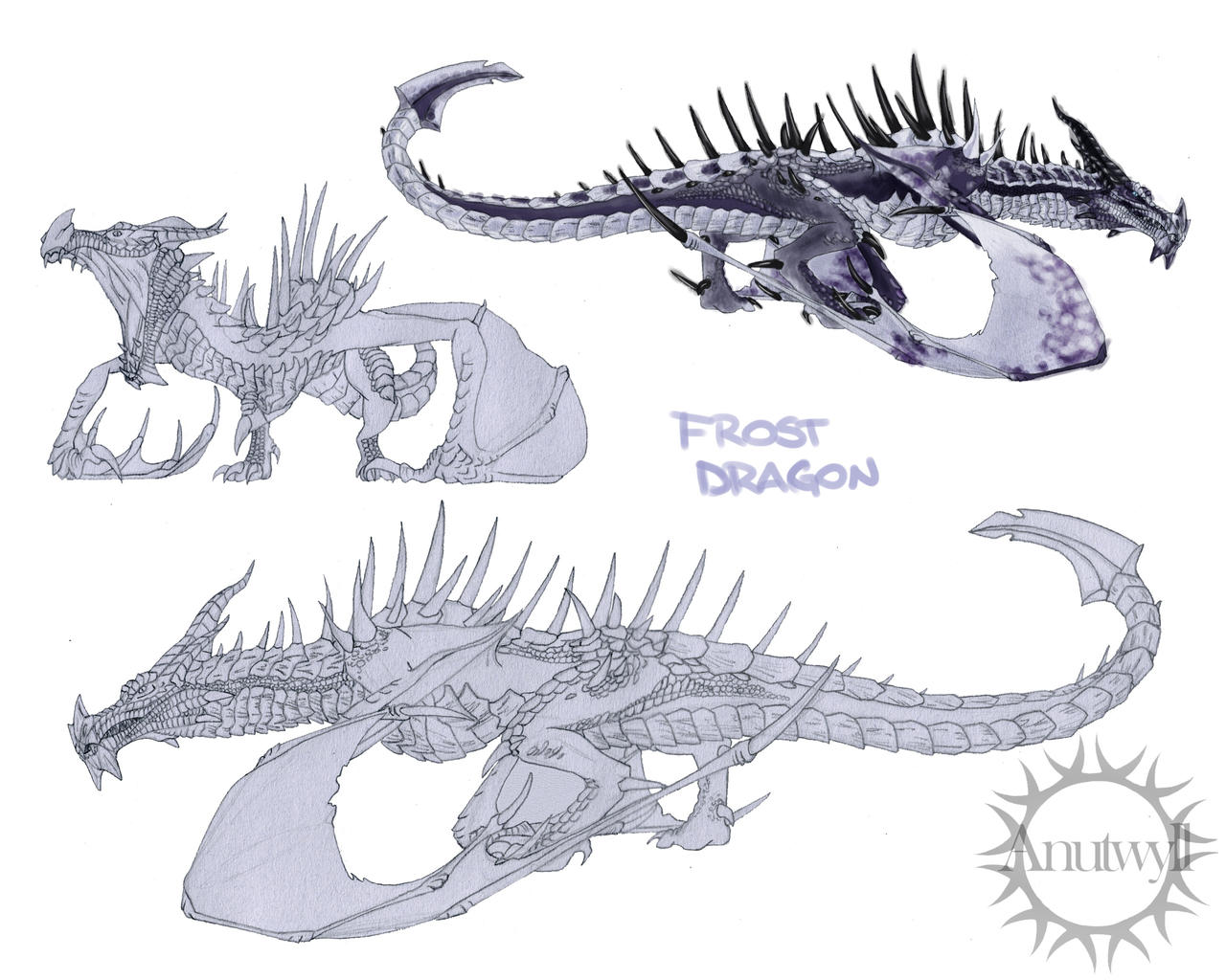 Frost dragon sketches by Anutwyll