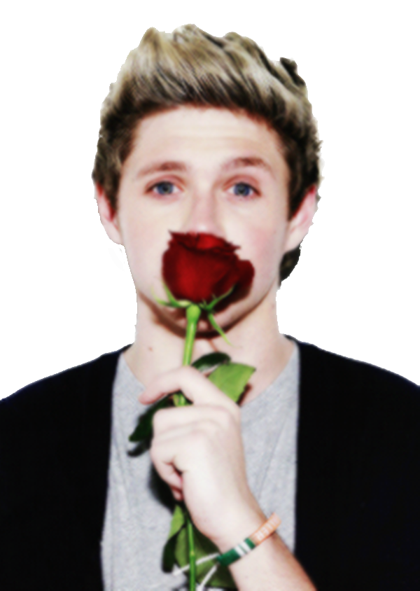 Niall Horan Png by XxPrettyxX on DeviantArt  Niall Horan Png...