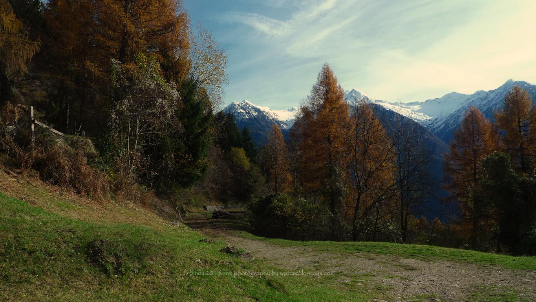 Castaneda, Switzerland by bindii