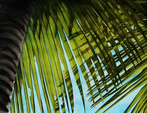 Summer Palms - Brisbane
