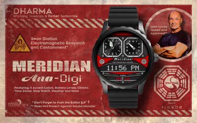 Meridian-Ana-Digi-preview