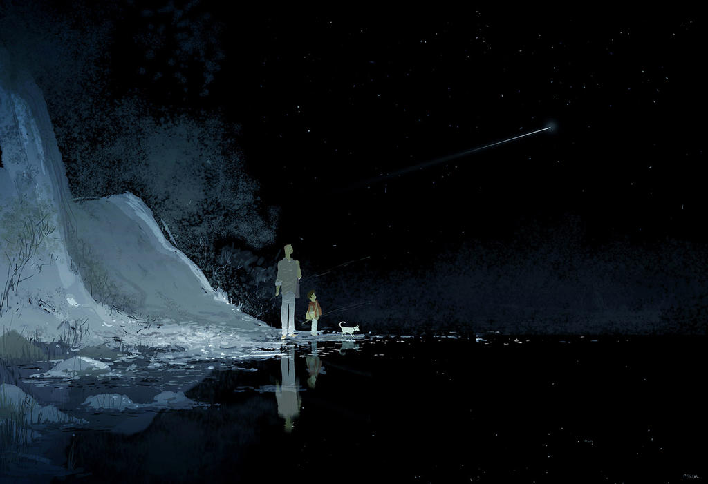 Shooting star by PascalCampion