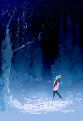 Big day in the snow. by PascalCampion