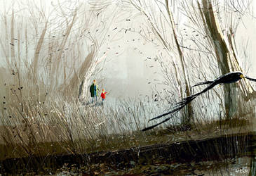 In the woods after the rain. \ by PascalCampion