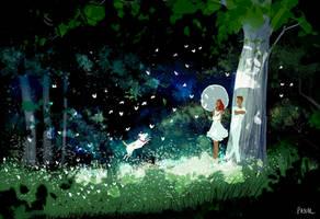 Midsummer by PascalCampion