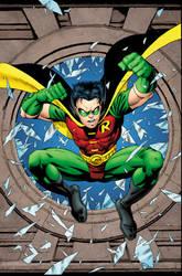 Robin001 Cvr