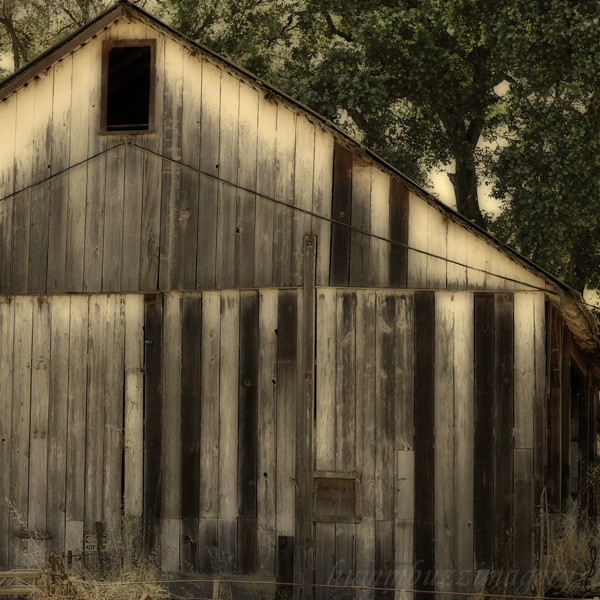 Side of a Barn by hummbuzz