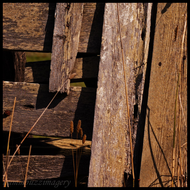 Battened down . . . by hummbuzz