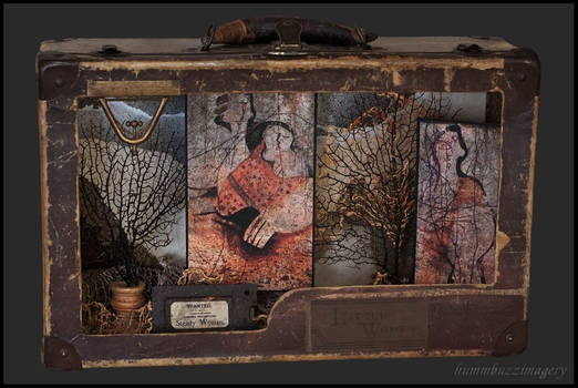 Wild Women of the Wood...assemblage