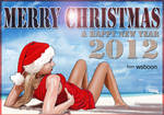 Merry Christmas and Happy New Year 2012 by sbwoo