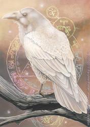 Raven's Magic