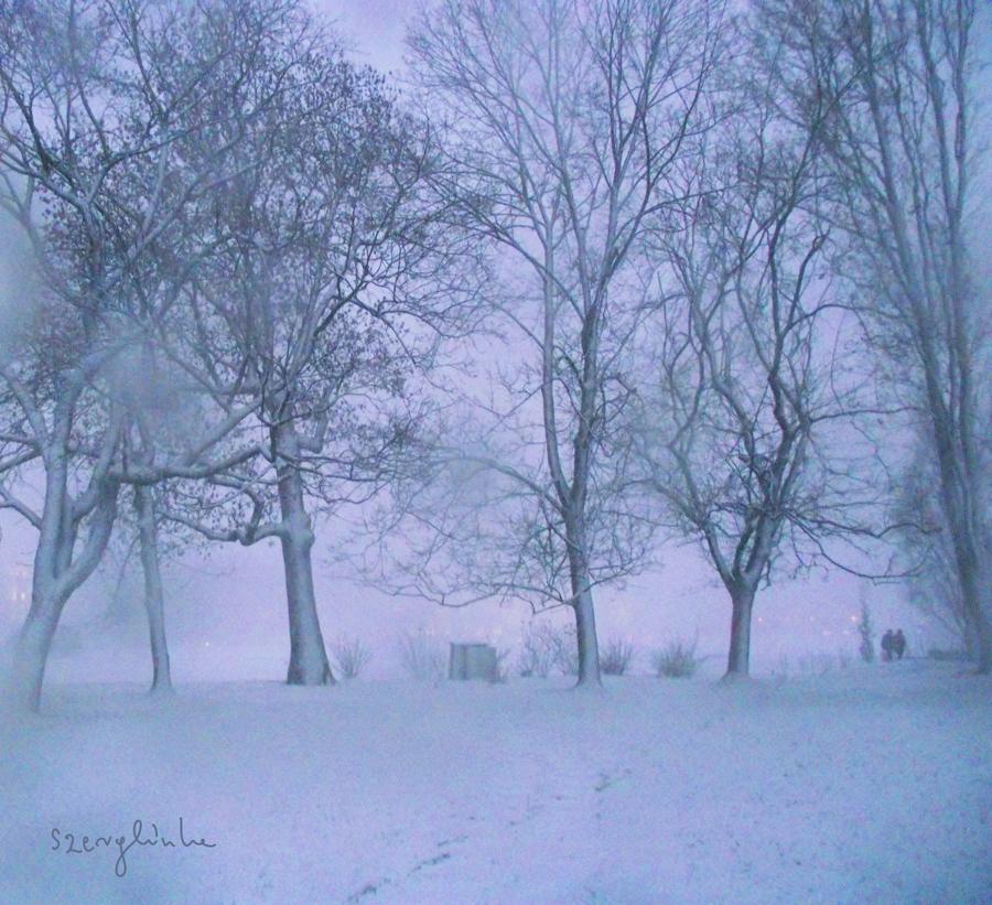 Winter III by szerglinka