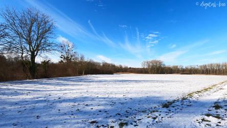snow landscape (9)