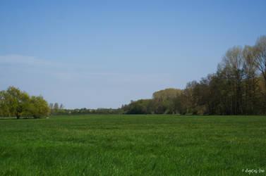 meadow by digital--bee
