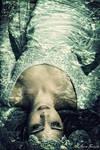 Ophelia by Laura-Ferreira
