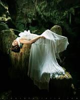 Siren's Lament by Laura-Ferreira