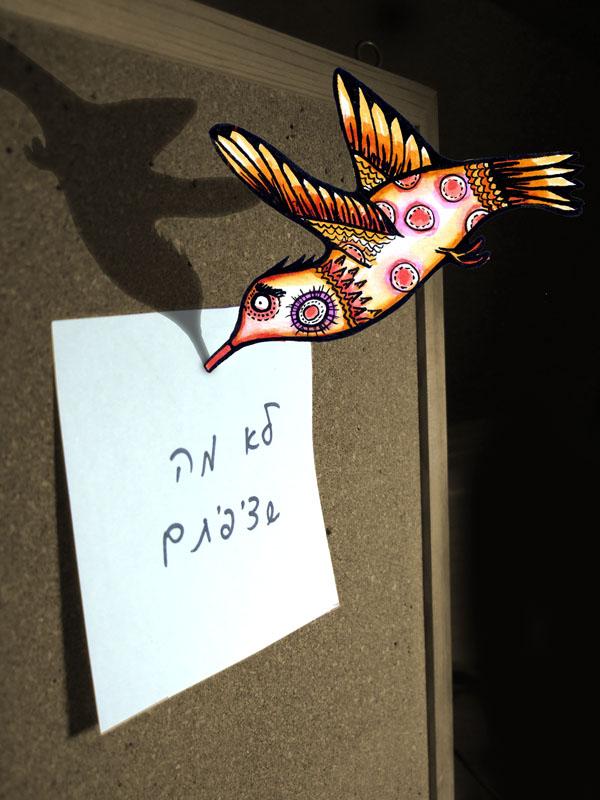 usfull humming bird by yael360