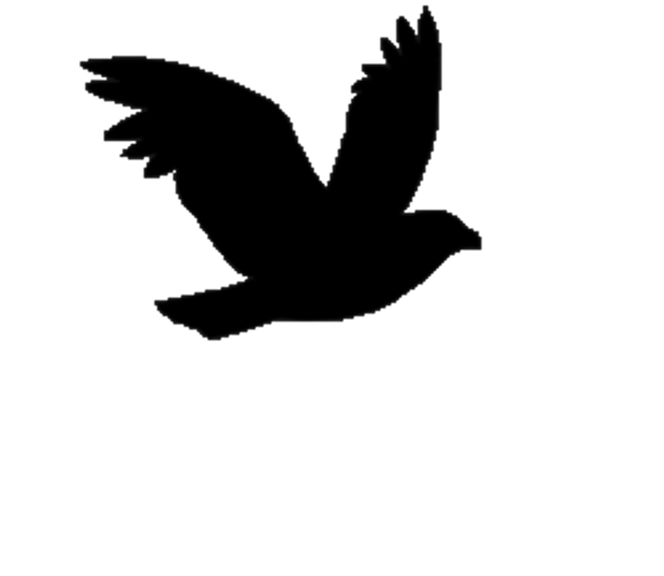 Silhouette Bird Flight By BlakkFox On DeviantArt