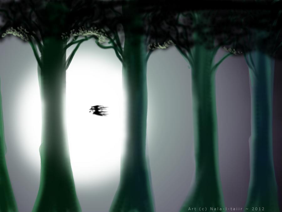 CE - Light and high trees by Nala-l-Taiir