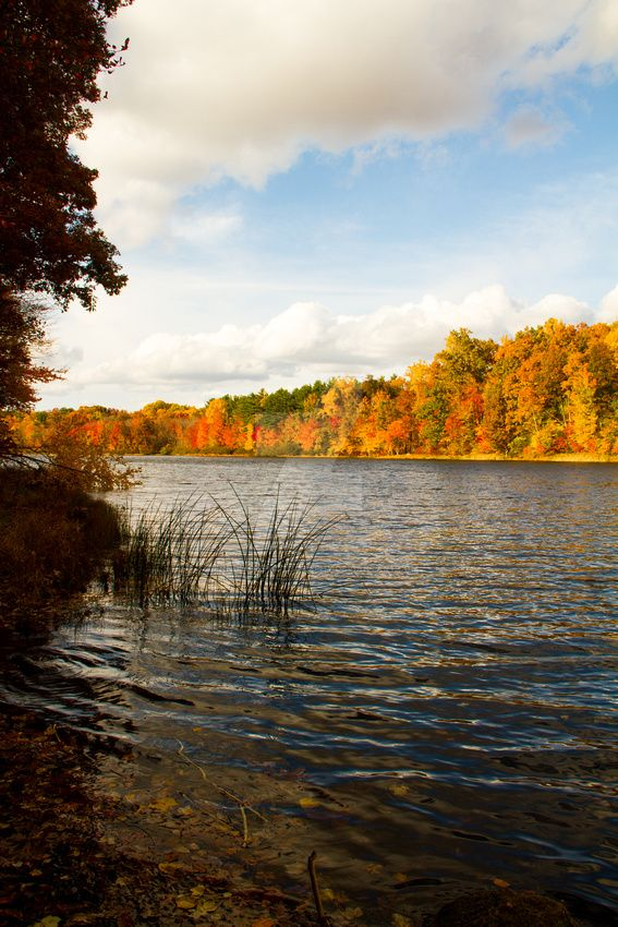French Creek State Park by JennDixonPhotography