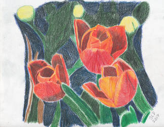 Three Red Tulips by JennDixonPhotography