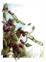 Raspberry Sucking... by WildWoodArtsCo