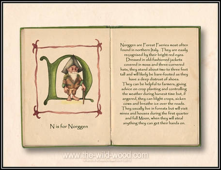 N is for Norggen