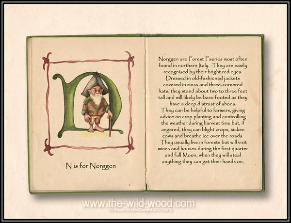 N is for Norggen by WildWoodArtsCo