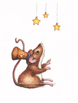 Star Mouse