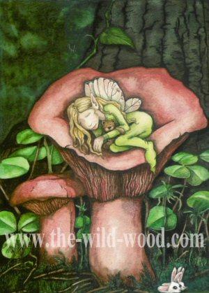 Dreaming Maggie by WildWoodArtsCo