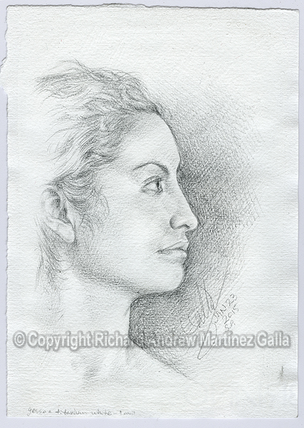 20150123 - BL profile in silverpoint by ibnteos