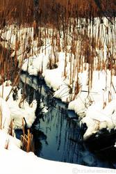 winter stream by TrishaMonsterr