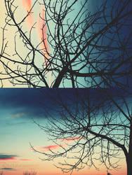 bare twilight by TrishaMonsterr