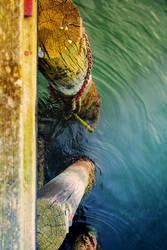 vibrant dock by TrishaMonsterr