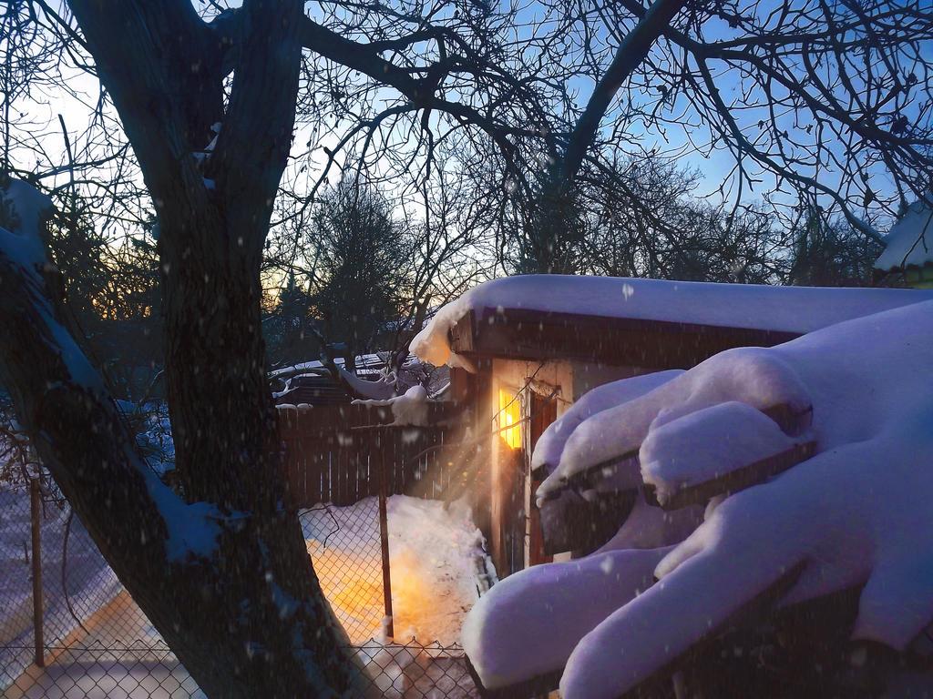 Beautiful winter by SawyerAFK
