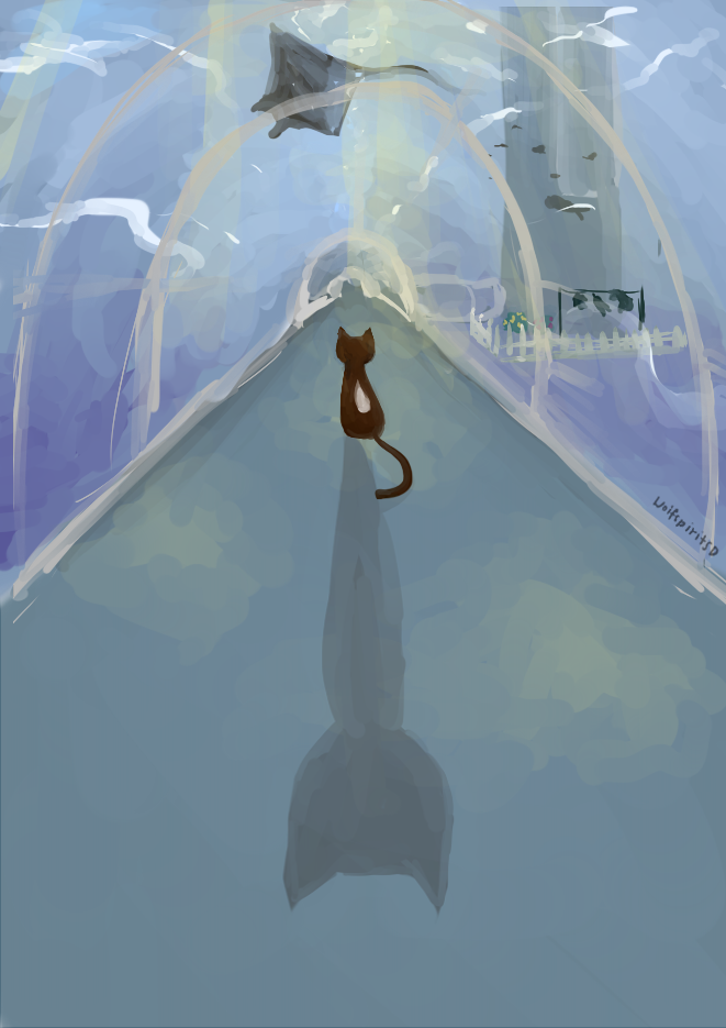 Sea Cat by wolfspiritsd