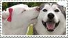 doggo kiss - stamp by dokuyurei