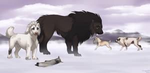 Talma's Antics - Coyote Hunting