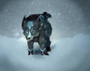 Blizzard by baltobud8