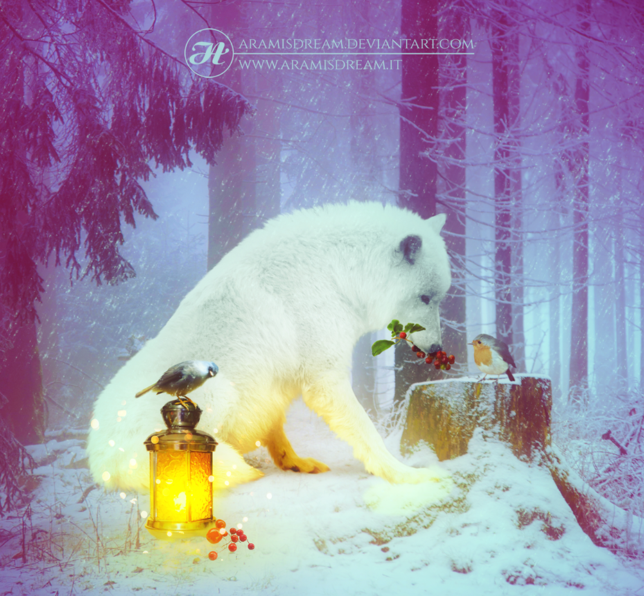 January feature winter by maytijssen on deviantart - The hideout in the woods an artists dream ...