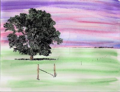 Field - 1 by Artbysll