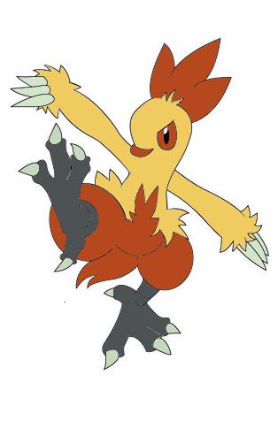 Pokemon Combusken Evolution Images | Pokemon Images