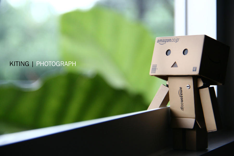 Danbo by kitinggiling
