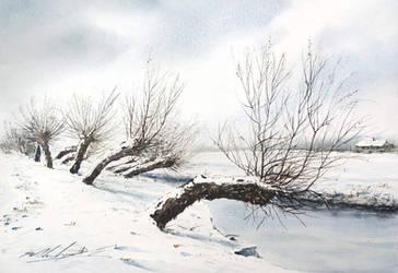 winter by stefanzhuty